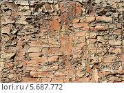 Купить «Потрескавшаяся краска на деревянной поверхности», фото № 5687772, снято 21 мая 2010 г. (c) Сергей Михайлов / Фотобанк Лори