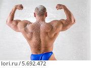Купить «Атлетически сложенный мужчина демонстрирует мускулы. Вид со спины», фото № 5692472, снято 3 октября 2013 г. (c) Losevsky Pavel / Фотобанк Лори