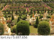 Купить «Таиланд. Тропический сад Нонг Нуч (Nong Nooch)», фото № 5697656, снято 22 февраля 2014 г. (c) Алексей Сварцов / Фотобанк Лори