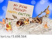 Пасхальная открытка. Стоковое фото, фотограф Ирина Апарина / Фотобанк Лори