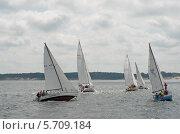 Яхтенная регата. Балтийское море. Редакционное фото, фотограф Svet / Фотобанк Лори