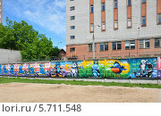 Купить «Граффити с талисманами Олимпиады в Сочи 2014», фото № 5711548, снято 21 июня 2013 г. (c) Голованов Сергей / Фотобанк Лори