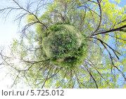Купить «Зелёная планета, круговая панорама», фото № 5725012, снято 18 мая 2013 г. (c) Михаил Ушаков / Фотобанк Лори