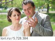 Купить «Молодожены смотрят на весенние зеленые листья дерева», фото № 5728384, снято 10 мая 2013 г. (c) Losevsky Pavel / Фотобанк Лори