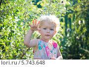 Красивая девочка в саду на фоне сочной зелени. Стоковое фото, фотограф Евдокимова Ольга / Фотобанк Лори