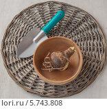 Купить «Луковица гиппеаструма в деревянной миске на плетеном круге и садовая лопатка», фото № 5743808, снято 3 декабря 2013 г. (c) Олеся Сарычева / Фотобанк Лори