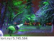 Купить «Новогодняя сказка», фото № 5745584, снято 2 января 2013 г. (c) Копосова Татьяна / Фотобанк Лори