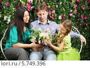 Купить «Счастливая семья сидит на плетеной скамейке около живой изгороди», фото № 5749396, снято 13 января 2013 г. (c) Losevsky Pavel / Фотобанк Лори
