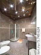 Купить «Ванная комната с душевой кабиной, туалетом и биде с небольшой со стенами, облицованными мелкой черно-коричневой плиткой», фото № 5749624, снято 16 января 2013 г. (c) Losevsky Pavel / Фотобанк Лори