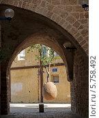 Купить «Подвешенное апельсиновое дерево. Яффо, Израиль», фото № 5758492, снято 4 октября 2012 г. (c) Ирина Борсученко / Фотобанк Лори
