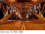 Купить «Санкт-Петербург. Мост Петра Великого (Большеохтинский)», фото № 5763108, снято 24 июля 2010 г. (c) Светлана Кудрина / Фотобанк Лори