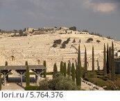 Купить «Вид на древнее еврейское кладбище на Елеонской (Масличной) горе. Иерусалим, Израиль», фото № 5764376, снято 9 октября 2012 г. (c) Ирина Борсученко / Фотобанк Лори