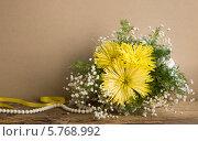 Натюрморт. Желтые хризантемы. Стоковое фото, фотограф Ольга Стрейкмане / Фотобанк Лори