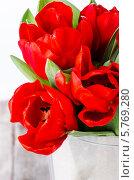Красные тюльпаны. Стоковое фото, фотограф Olena Gorbenko / Фотобанк Лори