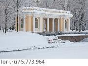 Купить «Павильон Росси на территории Михайловского сада зимой в снегопад, Санкт-Петербург», фото № 5773964, снято 27 января 2011 г. (c) Смелов Иван / Фотобанк Лори