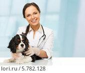 Купить «Женщина ветеринар со спаниелем», фото № 5782128, снято 19 ноября 2009 г. (c) Andrejs Pidjass / Фотобанк Лори