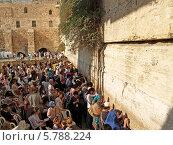 Купить «Израиль. Паломники у Стены Плача в Иерусалиме», фото № 5788224, снято 9 октября 2012 г. (c) Ирина Борсученко / Фотобанк Лори