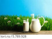 Купить «Кувшин и стакан с молоком на зеленой траве с ромашками», фото № 5789928, снято 3 апреля 2014 г. (c) Иван Михайлов / Фотобанк Лори