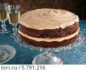 Купить «шоколадный торт на стеклянной подставке», фото № 5791216, снято 16 августа 2018 г. (c) Food And Drink Photos / Фотобанк Лори