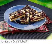 Купить «домашнее печенье с малиной и шоколадом», фото № 5791624, снято 16 августа 2018 г. (c) Food And Drink Photos / Фотобанк Лори