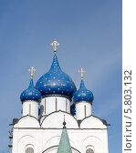 Синие купола Рождественского собора (2014 год). Редакционное фото, фотограф Андрей Апрельский / Фотобанк Лори