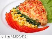 Мясо с овощами. Стоковое фото, фотограф Ирина Еськина / Фотобанк Лори