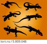 Силуэты ящериц на оранжевом фоне. Стоковая иллюстрация, иллюстратор Олег Прокофьев / Фотобанк Лори