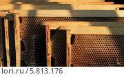 Рамки сушь. Пчеловодство. Стоковое фото, фотограф Денис Кошель / Фотобанк Лори