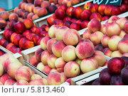 Купить «Нектарины и персики на прилавке», фото № 5813460, снято 4 июля 2013 г. (c) Elnur / Фотобанк Лори