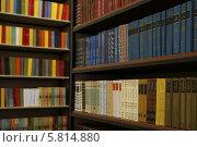 Книги в библиотеке (2014 год). Редакционное фото, фотограф Алина Холодова / Фотобанк Лори