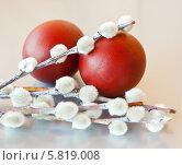 Два крашенных пасхальных яйца с несколькими веточками вербы на сером фоне. Стоковое фото, фотограф E. O. / Фотобанк Лори