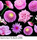 Купить «Бесшовный фон с цветами», фото № 5823296, снято 25 апреля 2014 г. (c) Наталья Спиридонова / Фотобанк Лори