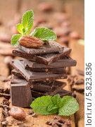 Купить «Какао-бобы, мята и темный шоколад», фото № 5823836, снято 16 апреля 2014 г. (c) Лидия Рыженко / Фотобанк Лори