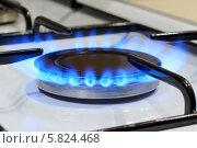 Зажженная конфорка газовой плиты. Стоковое фото, фотограф Maselko Vitaliy / Фотобанк Лори
