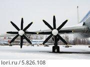 Пропеллеры самолета Ту-114 (2014 год). Редакционное фото, фотограф Pavel  Geller / Фотобанк Лори