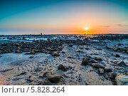 Закат над озером Эльтон (2014 год). Стоковое фото, фотограф Андрей Малышкин / Фотобанк Лори