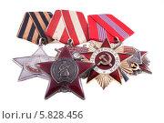 Купить «Ордена СССР времён Великой Отечественной войны и орден Октябрьской Революции», фото № 5828456, снято 21 апреля 2013 г. (c) Литвяк Игорь / Фотобанк Лори