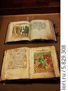 Купить «Старинные церковные книги в витрине музея», фото № 5829308, снято 7 мая 2013 г. (c) Sinyaya Boroda / Фотобанк Лори