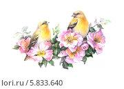 Птички на цветущей ветке. Стоковая иллюстрация, иллюстратор Татьяна Долосова / Фотобанк Лори