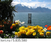 Женевское озеро. Стоковое фото, фотограф Татьяна Чечина / Фотобанк Лори