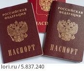 Купить «Российские и заграничные паспорта на светлом фоне», эксклюзивное фото № 5837240, снято 14 апреля 2014 г. (c) Игорь Низов / Фотобанк Лори