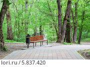 Купить «Скамейка в парке города Горячий ключ», эксклюзивное фото № 5837420, снято 20 апреля 2014 г. (c) Алексей Букреев / Фотобанк Лори