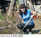 Купить «Весёлая женщина-дачница сидит с лопатой возле кустов смородины», эксклюзивное фото № 5843884, снято 20 апреля 2014 г. (c) Игорь Низов / Фотобанк Лори