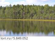 Лесное озеро. Стоковое фото, фотограф Юрий Зотов / Фотобанк Лори