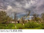Сельские сады. Стоковое фото, фотограф Сергей Гойшик / Фотобанк Лори