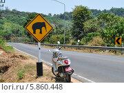 Купить «Дорожный знак, осторожно слоны», фото № 5860448, снято 28 марта 2014 г. (c) A Большаков / Фотобанк Лори