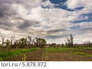 Сельские огороды. Стоковое фото, фотограф Сергей Гойшик / Фотобанк Лори