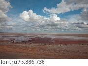 Берег озера Баскунчак (2014 год). Редакционное фото, фотограф Александр Степанов / Фотобанк Лори