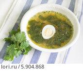 Купить «Суп из молодой крапивы», фото № 5904868, снято 14 мая 2014 г. (c) Дудакова / Фотобанк Лори