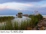 Купить «Озеро Балатон на закате. Кестхей, Венгрия», фото № 5905052, снято 30 апреля 2014 г. (c) Марина Славина / Фотобанк Лори